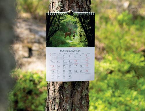 Kalenterin teettäminen – suunnittele itse kalenteri