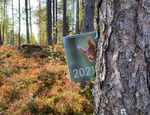 Suunnittele kalenteri vuodelle 2021