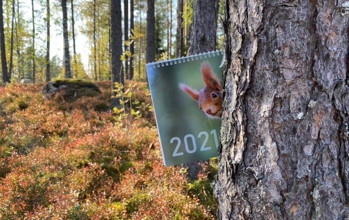 suunnittele oma kalenteri